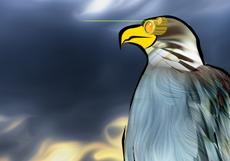 The Eaglebot
